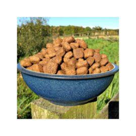 Premium Lamb & Rice Hypoallergenic Complete Dog Food Gluten Free